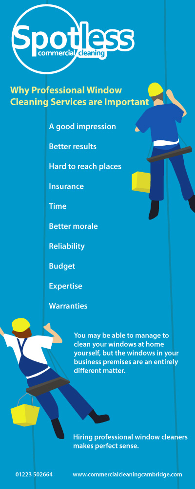 Window Cleaning Infographic